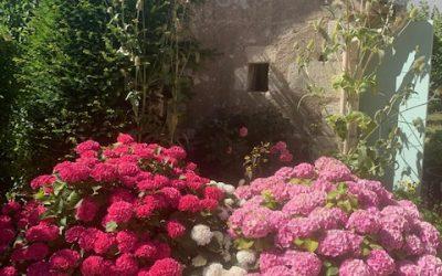Le magnifique jardin fleuri de l'Entraide Lochoise