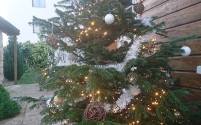 C'est Noël à l' Entraide !